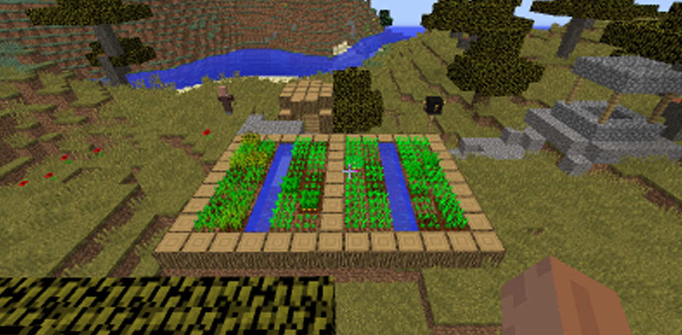 Single house village seed Minecraft 1.8.1.png